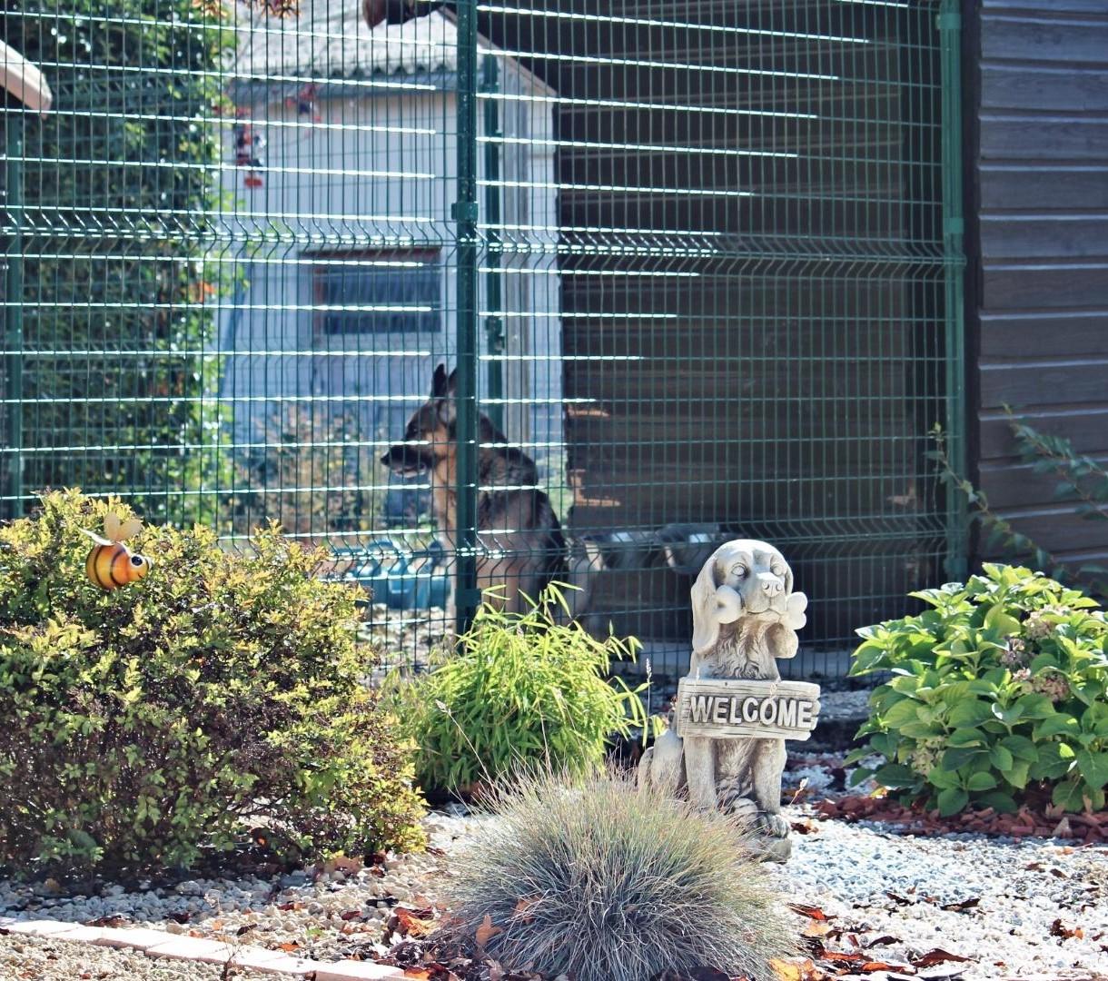 Pension canine à Montreuil Bonnin près de Poitiers 86
