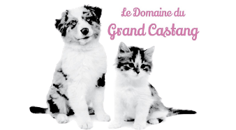 Le Grand Castang  Logo